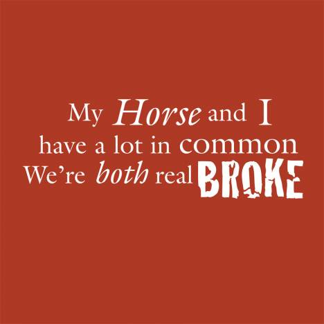 Sound Equine Ladies Tee Shirt My Horse And I Have a lot in Common