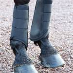 Shires Horse Equipment