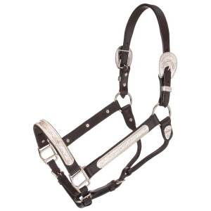 Tough-1 Berry Edge and Feather Silver Show Halter