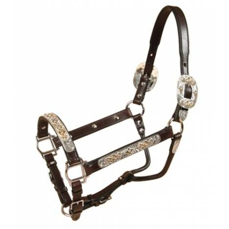 Tory Leather Blue Bonnet Congress Style Show Halter & Lead
