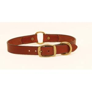 Tory Leather Leather Hunting Dog Safety Collar