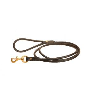 Tory Leather Rolled Leather Dog Leash - 6 ft