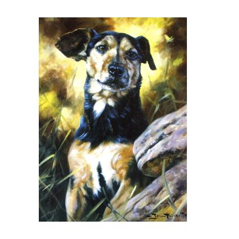 I Want to Play (Jack Russell) Blank Greeting Cards - 6 Pack