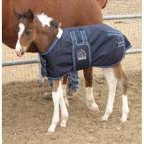 EOUS Heavy Weight Foal Rug