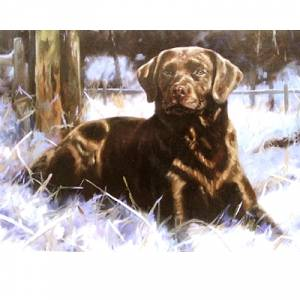 Chocolate Ice (Labrador Retriever) Blank Greeting Cards - 6 Pack