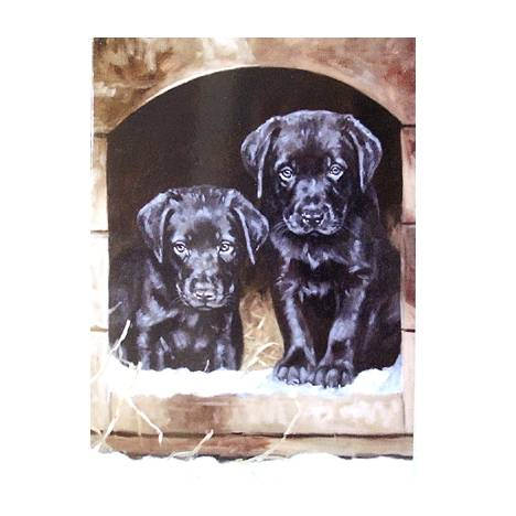 Just Looking (Labrador Retievers) Blank Greeting Cards - 6 Pack