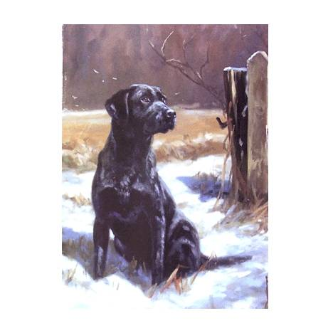 Patience (Labrador Retriever) Blank Greeting Cards - 6 Pack