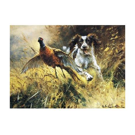 A Near Miss (English Springer) Blank Greeting Cards - 6 Pack