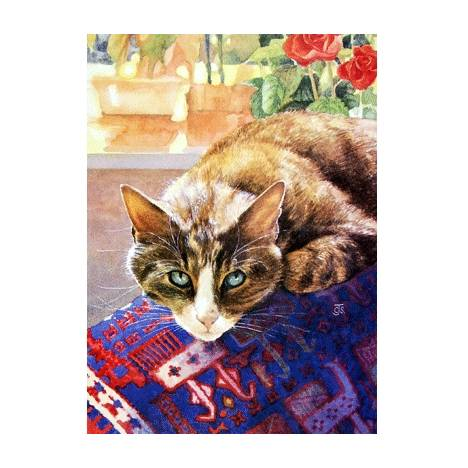 Pensive Blank Greeting Cards - 6 Pack
