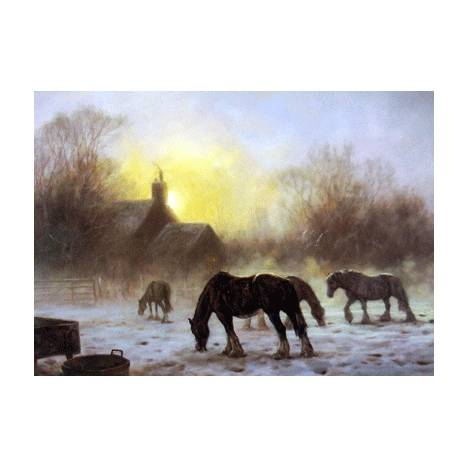 Winter Glow (Draft Horse) Blank Greeting Cards - 6 Pack
