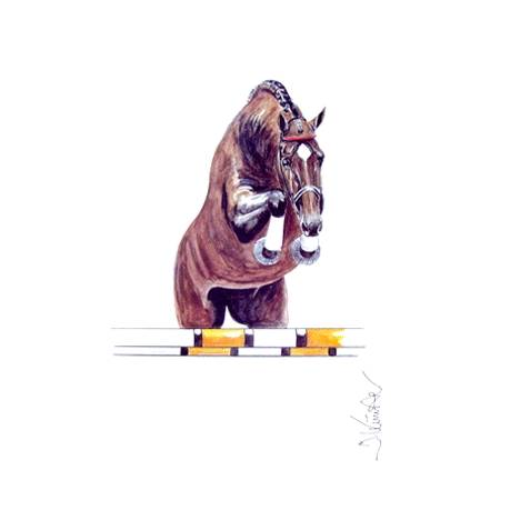 Amaretto, Show Jumper Art Print by Jan Kunster