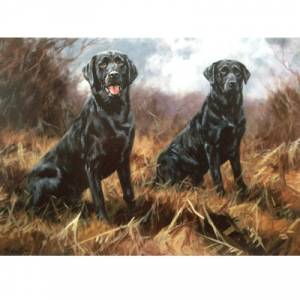 Awaiting Orders (Labrador Retriever) Blank Greeting Cards - 6 Pack