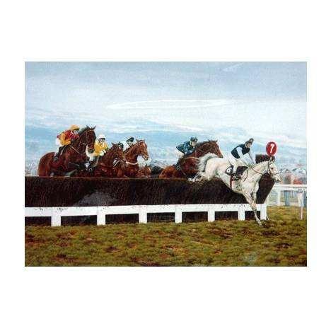 Desert Orchid By: Brian Tovey, Matted