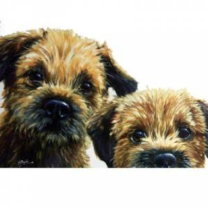 Dogs - Borders (Border Terrier) Blank Greeting Cards - 6 Pack