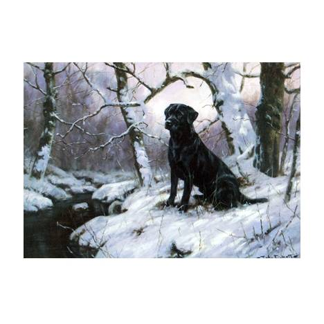 By the Stream (Labrador Retriever) Blank Greeting Cards - 6 Pack