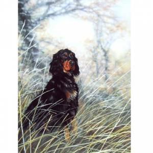 Dignity (Gordon Setter) Blank Greeting Cards - 6 Pack
