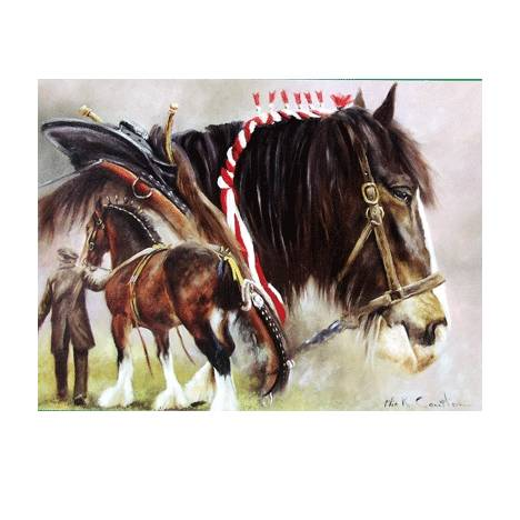 Gentle Giants (Draft Horse) Blank Greeting Cards - 6 Pack