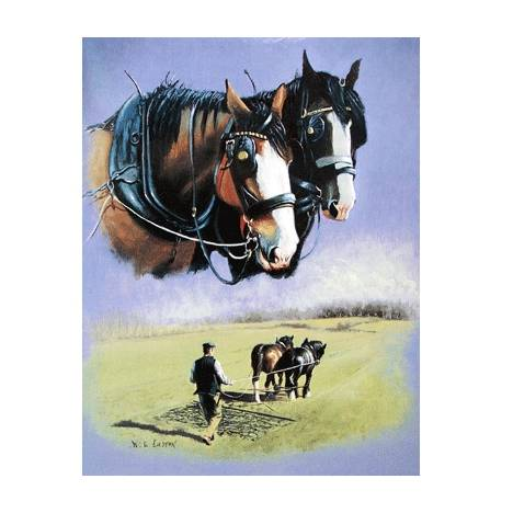 The Ploughmans Pal (Draft Horse) Blank Greeting Cards - 6 Pack