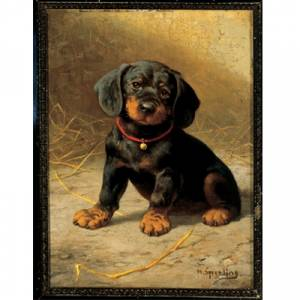 A Puppy By: Sperling Heinrich