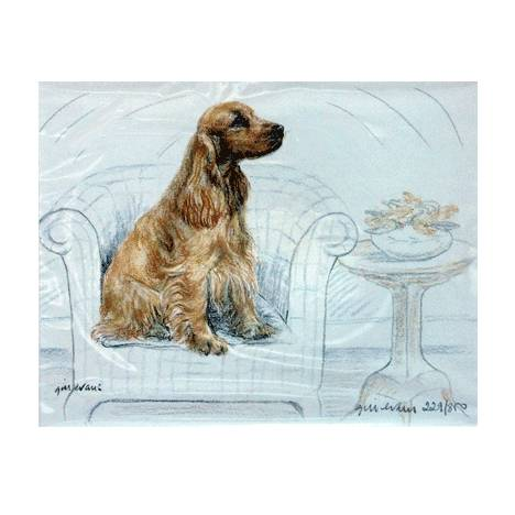 Cocker Spaniel By: Gill Evans, Matted