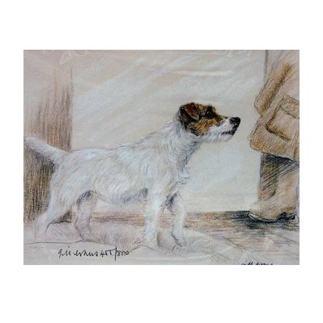 Terrier Standing By: Gill Evans, Matted
