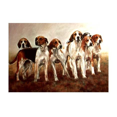 The Magnificent Seven (Foxhounds) Blank Greeting Cards - 6 Pack