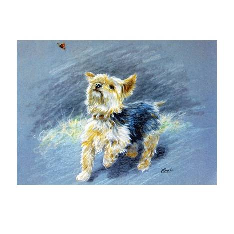 Butterfly Hunter (Yorkshire Terrier) Blank Greeting Cards - 6 Pack