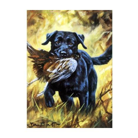 Good Boy (Labrador Retriever) Blank Greeting Cards - 6 Pack