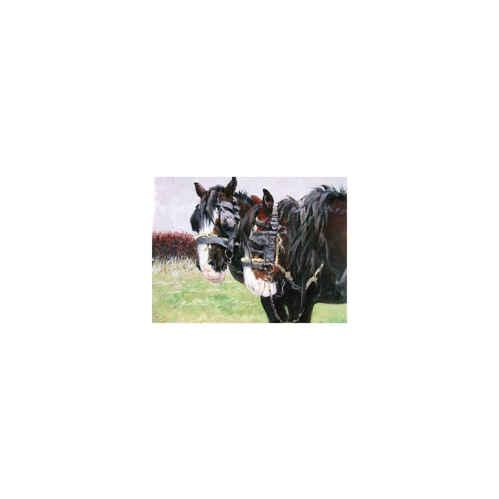 Workers (Draft Horse) Blank Greeting Cards - 6 Pack