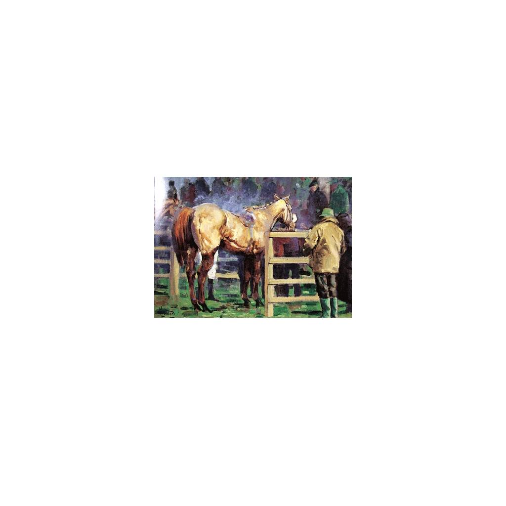 Unsaddling Enclosure (Horse Racing) Blank Greeting Cards - 6 Pack