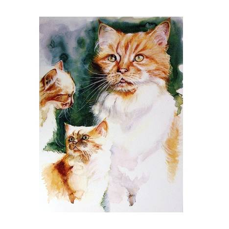 The Ginger Tom Blank Greeting Cards - 6 Pack