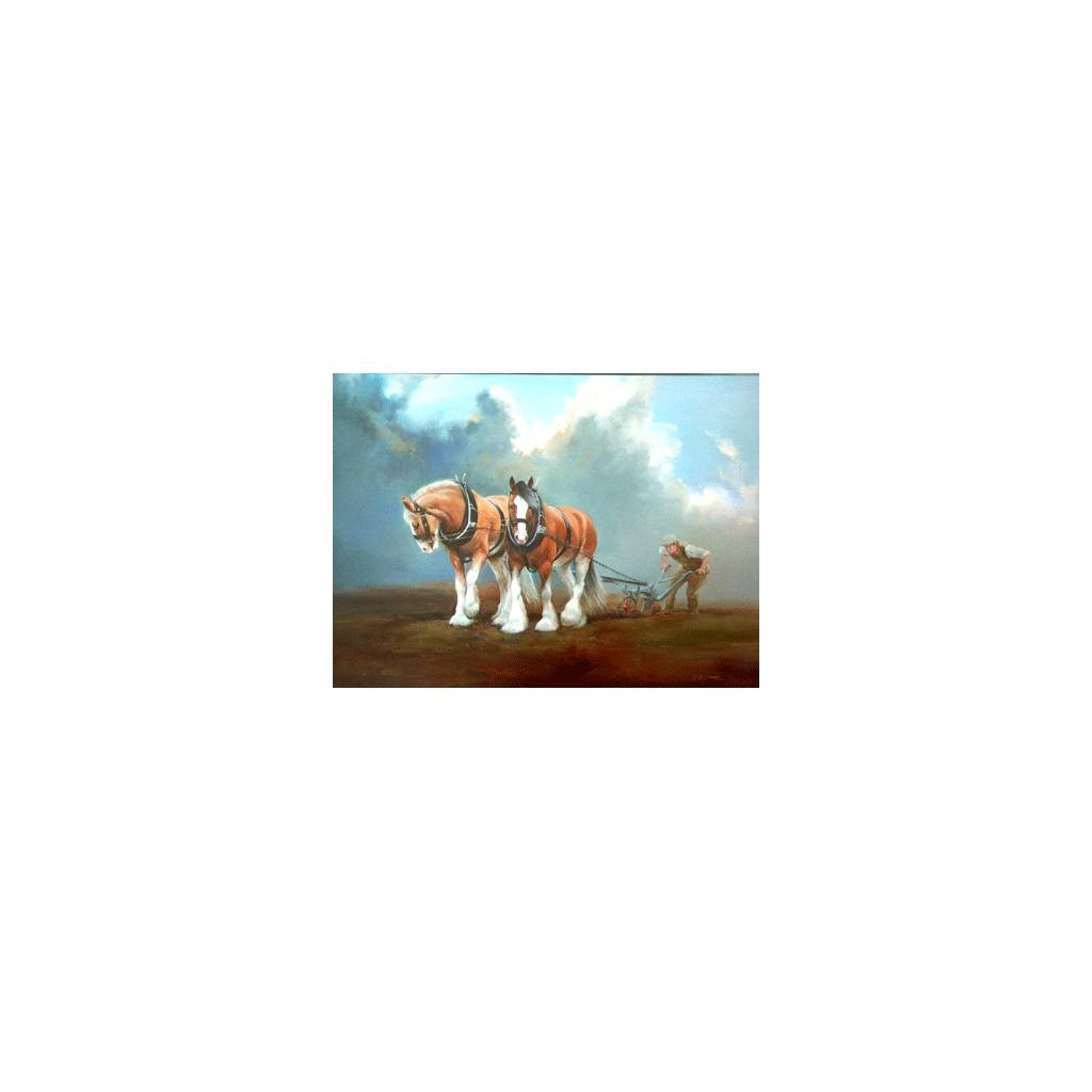 Fortitude (Clydesdale) Blank Greeting Cards - 6 Pack