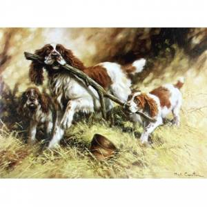 Branching Out (English Springer) Blank Greeting Cards - 6 Pack