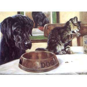 Cat Burglar (Cat and Labrador) Blank Greeting Cards - 6 Pack