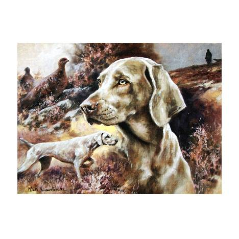 The Weimaraner Blank Greeting Cards - 6 Pack