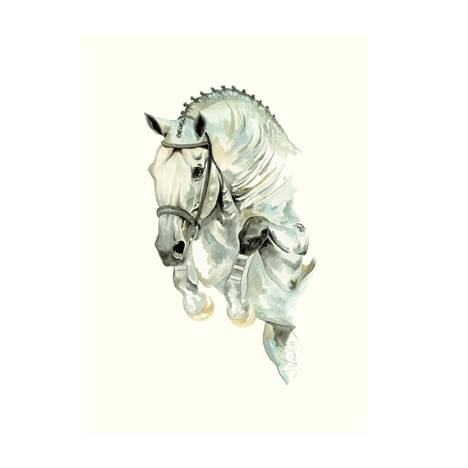 Daylight, Showjumper Art Print by Jan Kunster