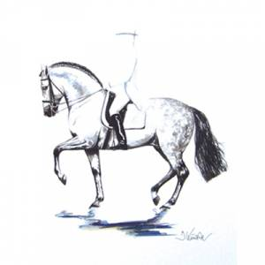 Invasor,  Dressage Art Print by Jan Kunster