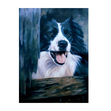 Ready for the Day (Border Collie) Blank Greeting Cards - 6 Pack