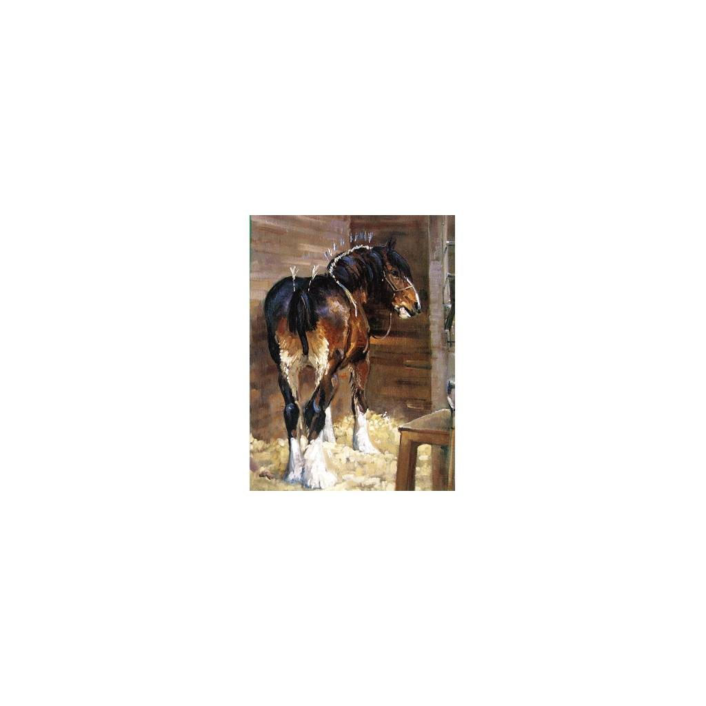 In Make Up (Draft Horse) Blank Greeting Cards - 6 Pack