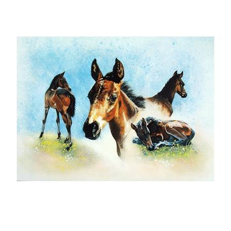 The Youngster Blank Greeting Cards - 6 Pack