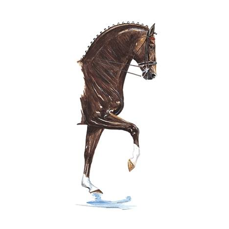Donnerhall, Dressage Art Print by Jan Kunster