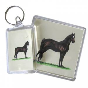 Acrylic Magnet - Morgan - 6 Pack