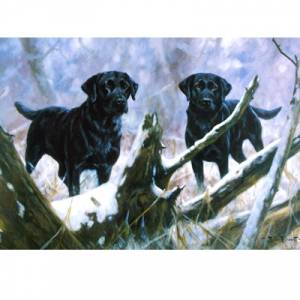 At Your Service (Labrador Retrievers) Blank Greeting Cards - 6 Pack