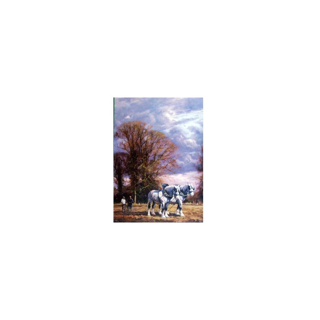 Autumn (Draft Horse) Blank Greeting Cards - 6 Pack