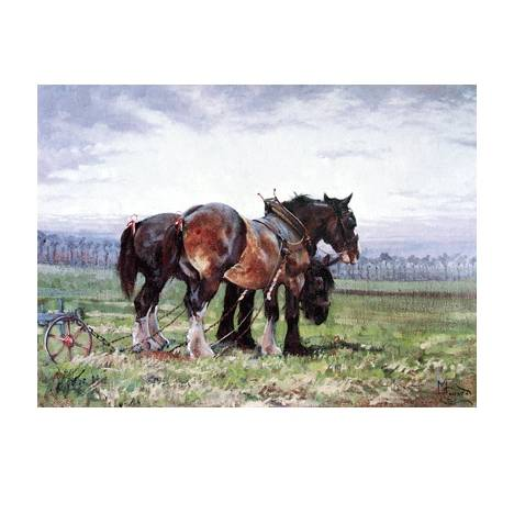 Waiting to Work (Draft Horse) Blank Greeting Cards - 6 Pack