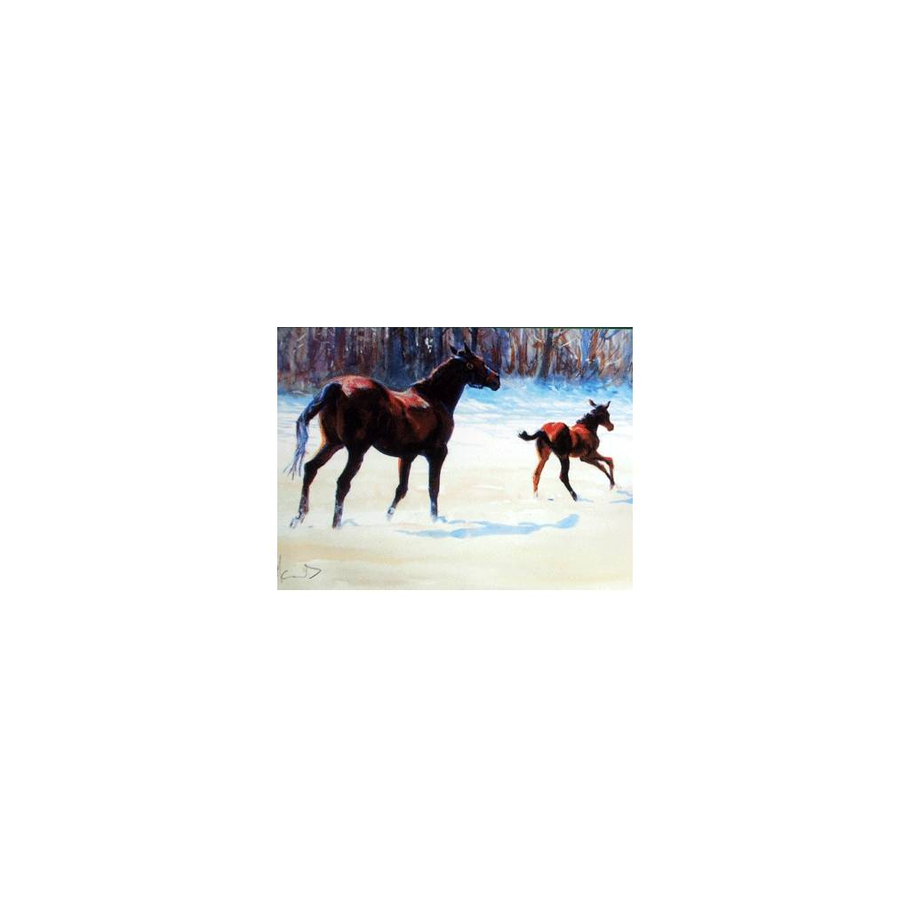 Christmas Surprise Blank Greeting Cards - 6 Pack