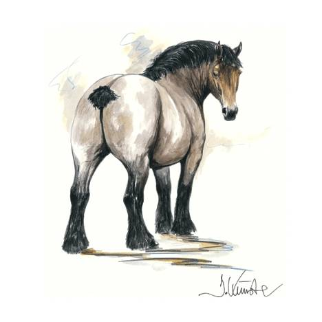 Chronos, Draft Horse Art Print by Jan Kunster