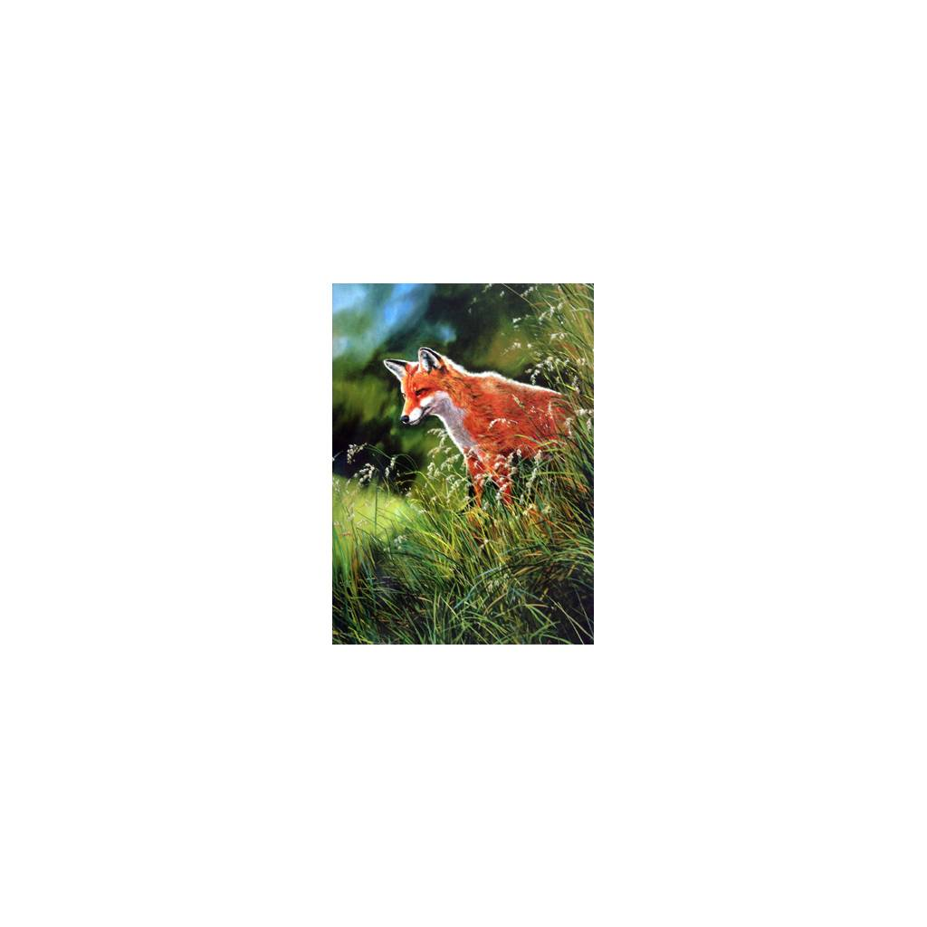 Fox and Fox Hunting - In the Grass Blank Greeting Cards - 6 Pack