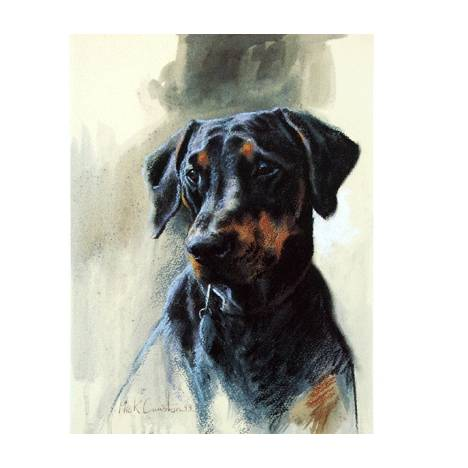 Head of Doberman By: Mick Cawston