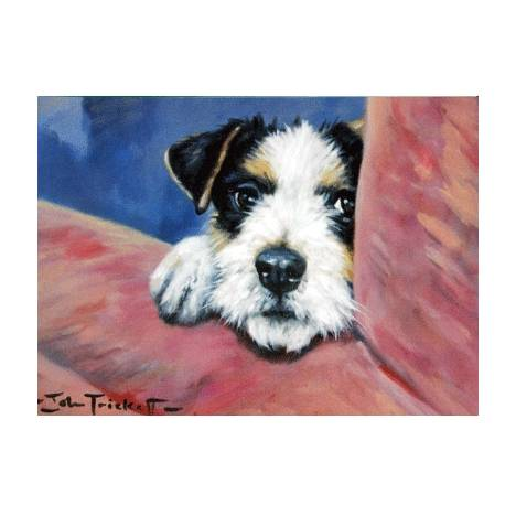 Peeping Tom (Jack Russell) Blank Greeting Cards - 6 Pack
